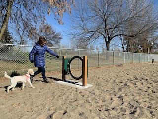 COMM 2020 Parc canin parc des Batisseurs module de jeux chien 6 1